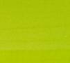 Matte Bright Green